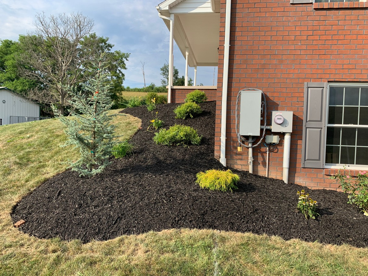 plants trees shrubs flowers annuals perennials landscaping hardscaping poolscapes filrepits landscape hardscape mulch design pleasant hill hanover pa garden center